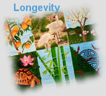 Longevity: fengshui painting with tortoise, bamboo, peach tree; etc.