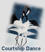 Courtship Dance of red crowned cranes fo health